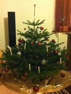 ... den Baum montiert und geschmückt.