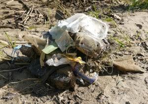 ... angefangen, den angeschwemmten Müll in nächster Nähe einzusammeln (darunter Damenbinden, eine Videokassette, Schläuche, Kabel, drei Schuhe, Büchsen, Plastik...)...Abfall