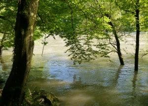 Hochwasser 5 300x216
