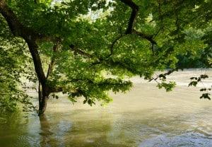 Hochwasser 7 300x208