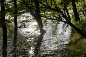 Hochwasser 8 300x197