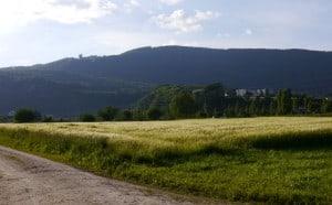 Winzighausen.