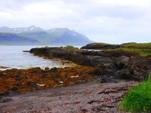 Der Wanderweg rund um die verzweigte Halbinsel hat einiges zu bieten.