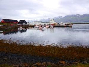 Der kleine Hafen, links zwei der historischen Holzhäuser, auf die die Einwohner ebenfalls sehr stolz sind.